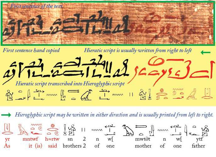 gynocentrism in egypt