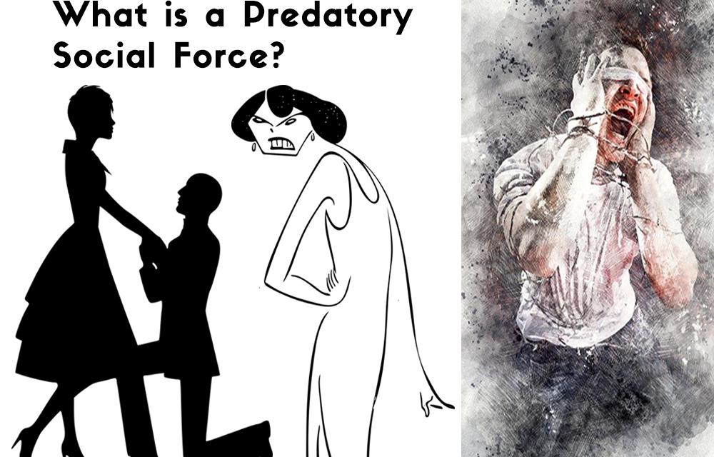 Defining the Predatory Gynocentrism Social Force
